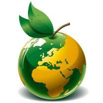 Kvalitets-, Miljö- och Arbetsmiljösystem